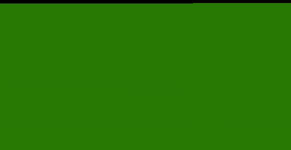 Parrot Video Services